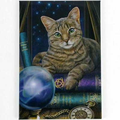 Very Large Fortune Teller Cat Canvas by Lisa Parker