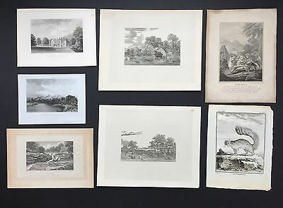 Job Lot - Seven (7) mainly Early 19th Century Engravings