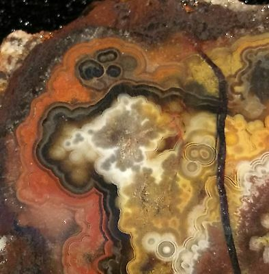 """Super High Grade"" Mexican Lace Agate Rough Slab"