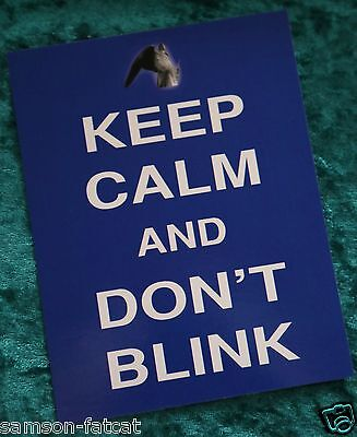 Keep Calm and Carry On Don't Blink slogan novelty postcard