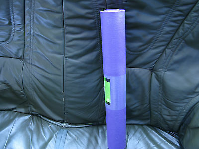 Purple Exercise Yoga Fitness Workout Mat Physio Pilates Festivals Camping Gym