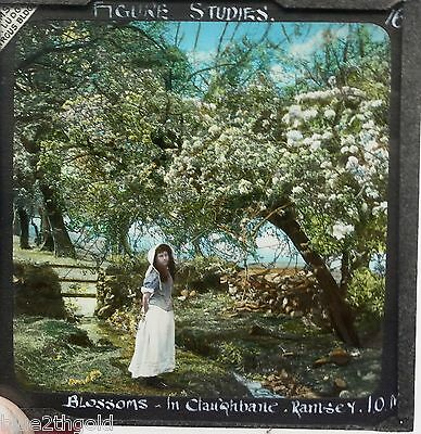 Superb Photo Image Magic Lantern Slide Blossom Young Girl Claughbane Ramsey Iom