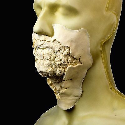 Rubber Wear Foam Latex Prosthetic - Large Zombie Mouth #1 FRW-115 - Makeup FX