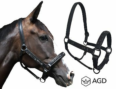 AGD Black Knight. Superior padded leather, sparkly horse halter. Large PONY size