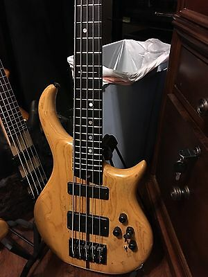 Warrior Dran Michael 5 String Bass