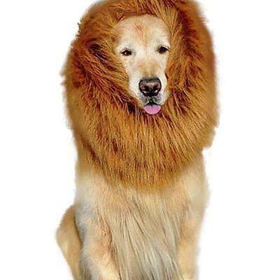 Pet Costume Lion Mane Wig Dog Halloween Sanda Vêtements Fancy Dress up Brun M AC