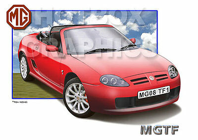 MGF or MGTF PRINT - PERSONALISED ILLUSTRATION OF YOUR CAR