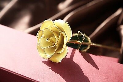 Yellow Genuine Rose Preserved Dipped in 24K Gold Rose Gifts for Valentine's Day