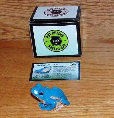 Harmony Kingdom POT BELLYS Zoologicals PULO DART FROG Tree Figure in BOX + CARD