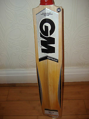 GM cricket bat (only used about 6 times)