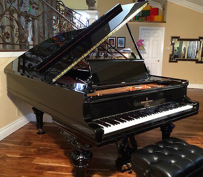 STEINWAY & SONS GRAND PIANO MODEL B The Best Sounding B in the world (NEW)