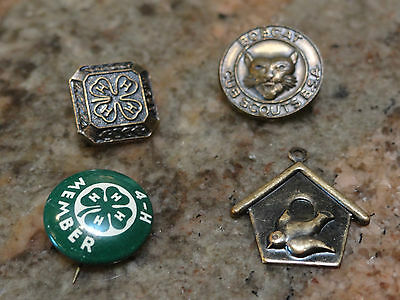 VTG Cub Scout, 4-H, and Blue Birds Pins
