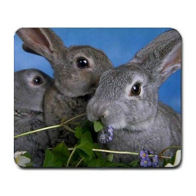 Bunny Rabbits Large Mousepad Mouse Pad Great Gift Idea