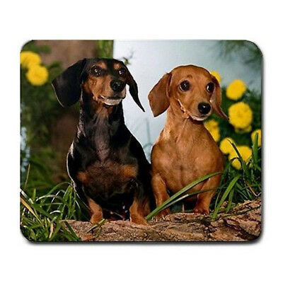 Dachsund puppies cute  Large Mousepad Mouse Pad Great Gift Idea
