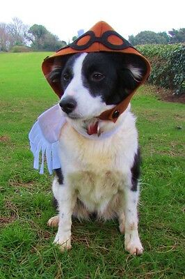 Medium dogs old fasioned pilot fancy dress costume hand sewn by Mrs Nibbles
