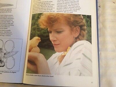 TALKING ANIMAL - book from TVS Show 1985