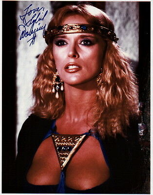 SYBIL DANNING ~ GRINDHOUSE - HALLOWEEN ~ #2 ~ SIGNED 10x8 PHOTO COA