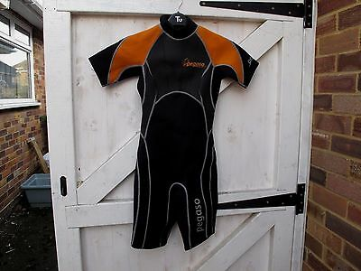 Pegaso Shortie Wetsuit Size Xs Great Condition As Pics Show