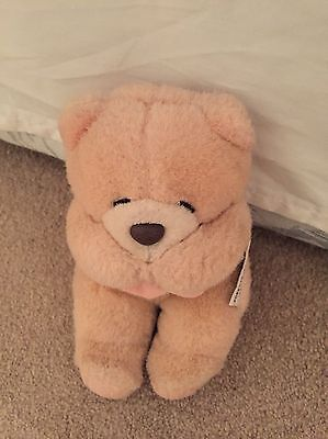 Soft Forever Friends Bear. Used But In Excellent Condition