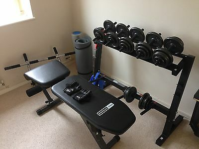 Fitness / Gym Equipment - Exercise bench, weights, dip station, pull up bar