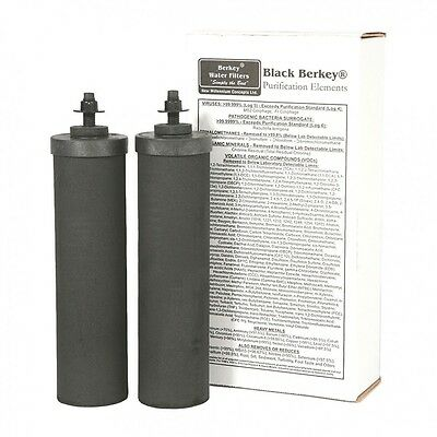 Berkey BB9-2 Replacement Black Purification Elements, 2-Pack