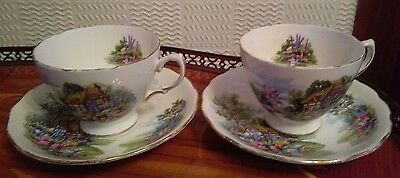 Pair of Vintage Royal Vale Cups & Saucers Pattern 7382