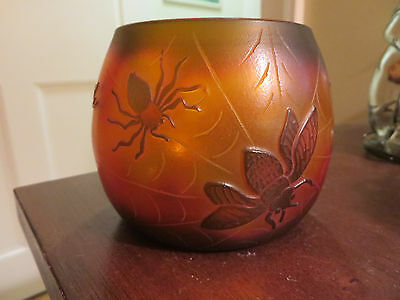 beautiful glass vase spider spider web bee pinecones  needles branches