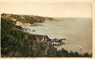 s10129 From Pine Forest, Fermain, Guernsey postcard unposted