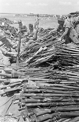 WW2 Photo WWII Huge Pile of Captured German Mauser Rifles  Tunisia 1943 / 4155
