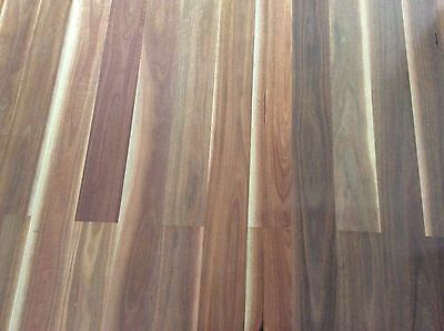Timber Flooring Spotted Gum