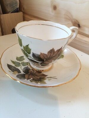 Royal Stafford Tea Cup And Saucer. Beechwood Pattern