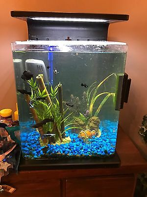 Tropical Fish Tank with all accessaries