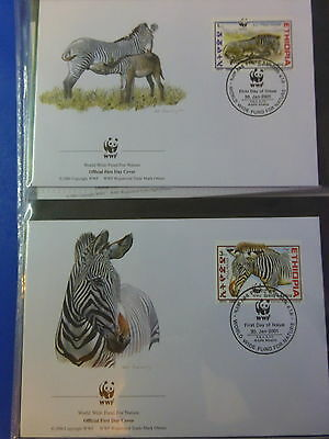 Wwf Official Wwf First Day Covers ~~Ethiopia  *grevy's Zebra*   2001
