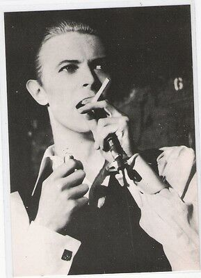 David BOWIE -  (Pavillon de Paris 1976)