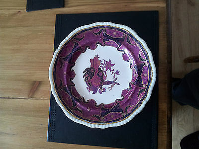 """Antique SPODE Imperial Frog Pattern 4233 9"""" Plate England."""