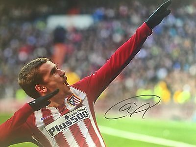 Antoine Griezmann Atletico Madrid Original Hand Signed Photo 12x8 With COA