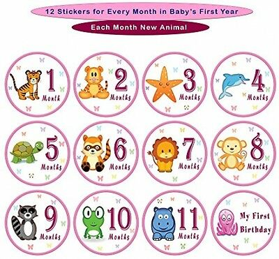 Baby Monthly Stickers Infant Girl Month Milestone Keepsake Photo Sticker New