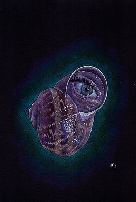 """""""170217a4 Eye Snail"""" Original Drawing by Dale Keogh prismacolor"""