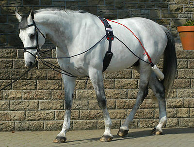 *John Whitaker Training System/aid/Pessoa With Roller + Fast&Free P+P*
