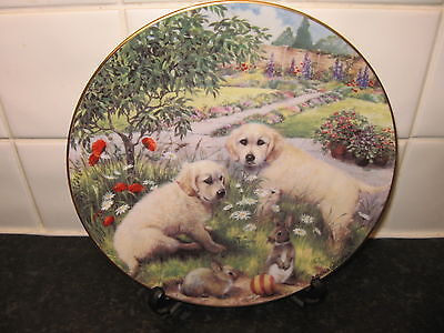Golden Retriever Dog  Plate -  Hop It  -    Hamilton