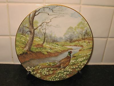 The Pheasant   Bird Plate -  Waterside    - Royal Doulton