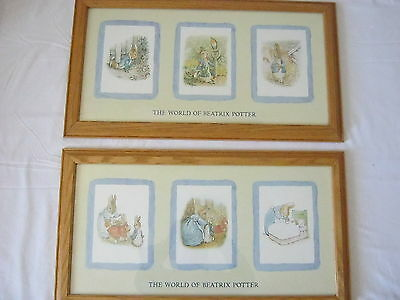 Peter Rabbit Beatrix Potter Professionally Framed Prints Wall Decor