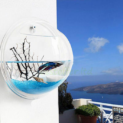 New Wall Mount Hanging Fish Bubble Aquarium Round Bowl Tank Home Decor Pot Plant