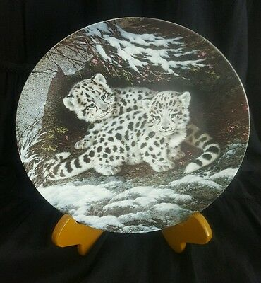 Snow Leopard Baby Cats Of The World Collector Plate By Will Nelson