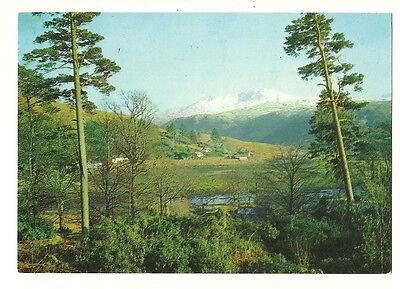 Strontian - a larger format, photographic postcard of Strontian on Loch Sunart