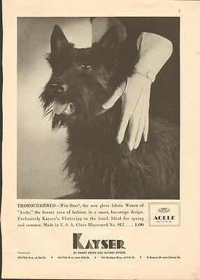 1935 Kayser Win-Bars Glove fabric clothing ad & Terrier-/952