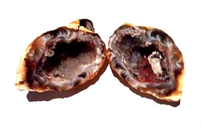 Friendship Caves - Natural Agate Geode Crystal Cave/Geode Occo Ocho Pair - 94g