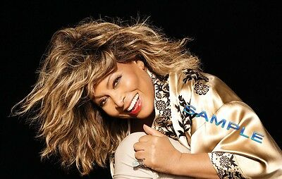 Tina Turner Photo Disc 500 In All  Great Shots Many Rare And Unseen