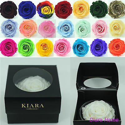Everlasting White single Rose bud Preserved 100% Natural Real Flower - Gift
