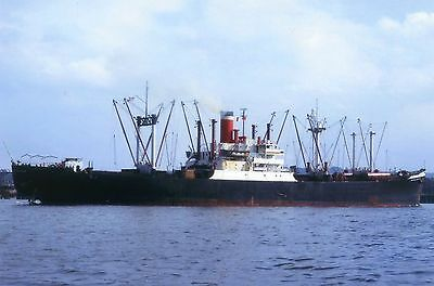6x4 SIZE PHOTOGRAPH OF THE AMERICAN CARGO SHIP  AMERICAN HARVESTER